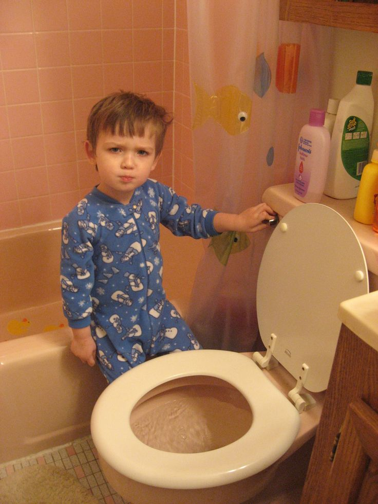 Curious Kids: Where does my poo go when I flush the toilet? - The Conversation - ABC Splash - http://splash.abc.net.au/newsandarticles/blog/-/b/2620217/curious-kids-where-does-my-poo-go-when-i-flush-the-toilet-?WT.tsrc=Email&WT.mc_id=Innovation_Innovation-Splash%7CPrimary_email%7C20170830