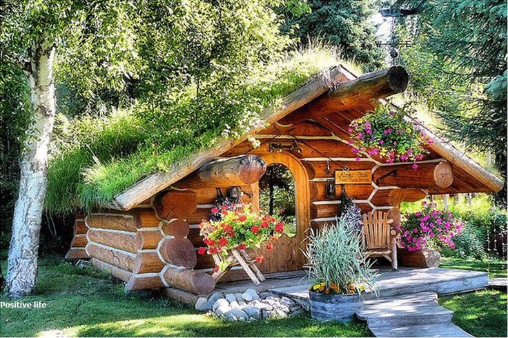 cute cabin with a living roof