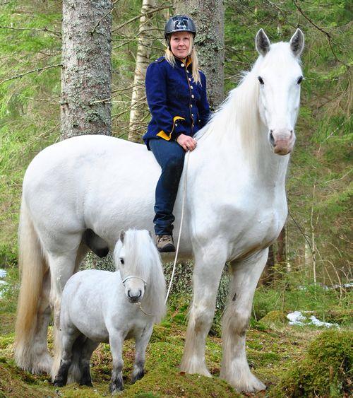 Alla Sveriges hästraser på mässan vad heter kvinnan på håsten ?