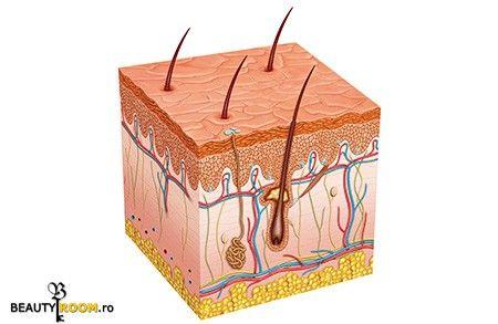 Afla mai multe despre pielea ta -