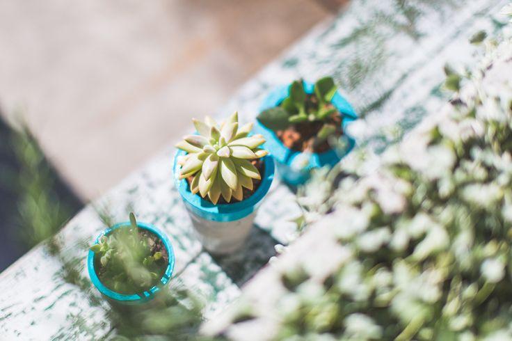 Malikai & Penny 2014 - Turquoise Plant Vessels