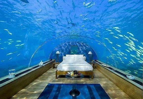 Стеклянный номер для молодоженов на дне Индийского океана (Мальдивы).    Инерыбывместорыб. :)