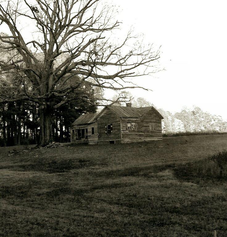 Abandoned North Carolina Homes: 2616 Best Abandoned Mansions Images On Pinterest