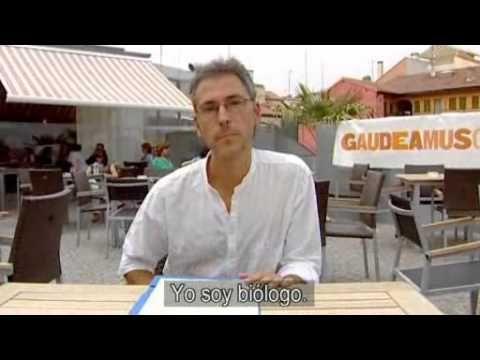 BBC Basic Spanish: Mi Vida Loca ep. 12 Flashcards | Quizlet