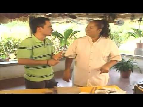 MARISCOS / CAMARONES    - Camarones en Crema de Chilpaya, La Ruta del Sabor, Dos Bocas Veracruz - YouTube