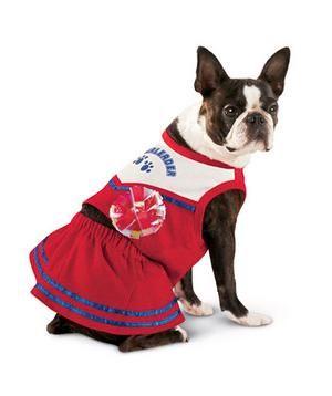 Halloween Costumes for Pets: Cheerleader Dog Costume