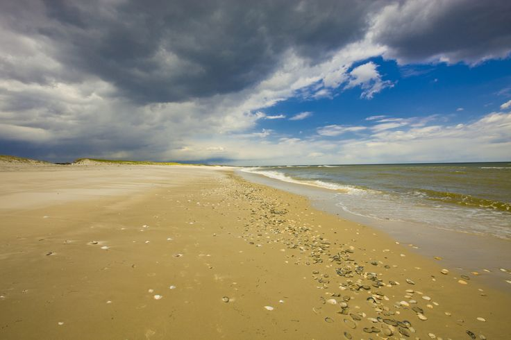 New Jersey: Island Beach State Park  - HouseBeautiful.com