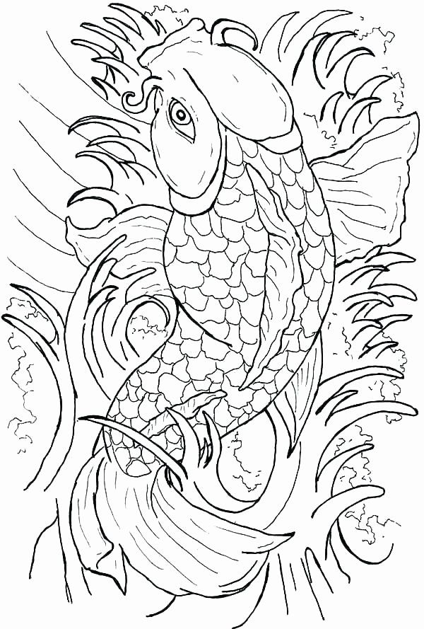 Koi Coloring Pages For Adults Awesome Koi Fish Outlines In 2020 Fish Coloring Page Japanese Embroidery Coloring Pages