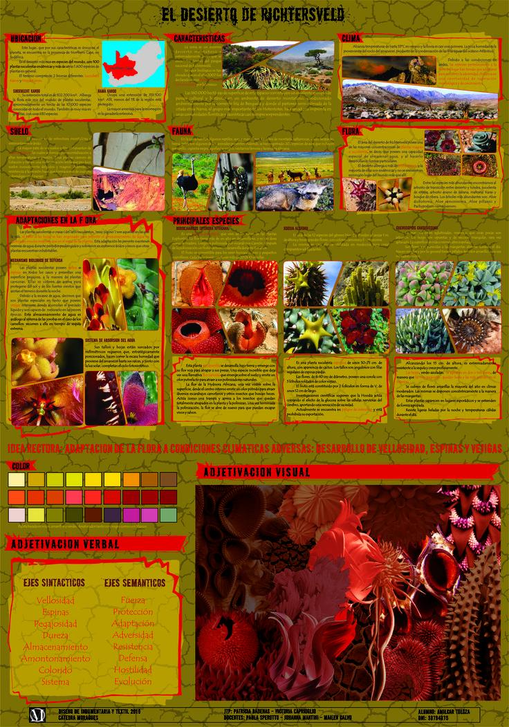 TP 4 Texturas - Panel analítico-informativo Desierto 2