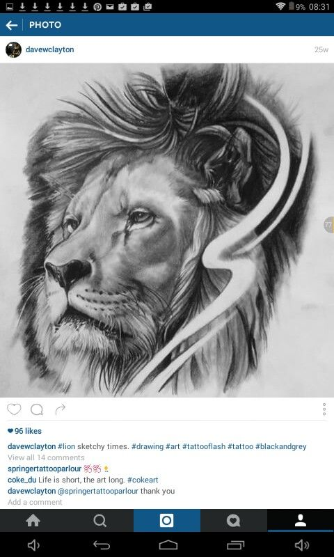 This is another favourite, a fantastic and accurate drawing of a lion by 'davewclayton'