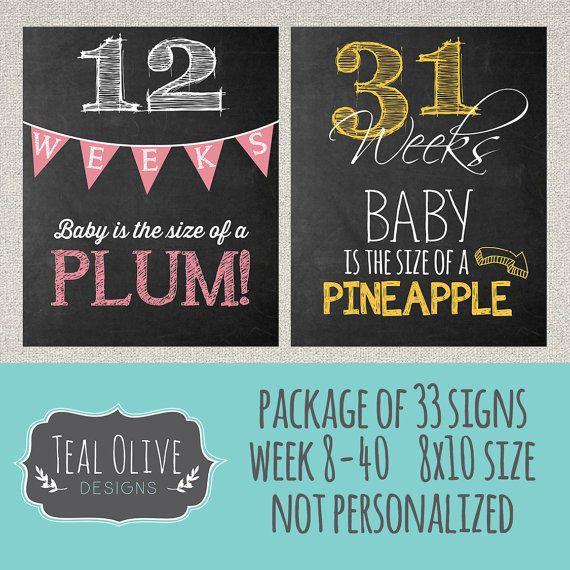 Weekly Pregnancy Chalkboard Sign - Week 8-40 Package Deal 33 Signs - Weekly Pregnancy Countdown - Baby Size Only - 8X10 - INSTANT DOWNLOAD