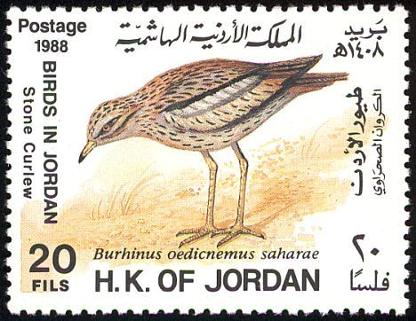 Eurasian Stone-curlew stamps - mainly images - gallery format