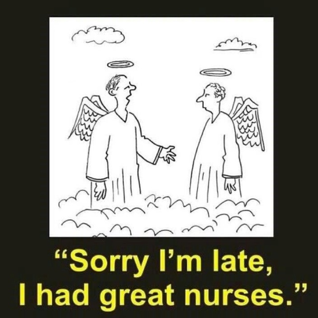 Nurses Decorations Nurse Style Nurse Humor Nurses: Best 25+ Hospice Nurse Ideas On Pinterest