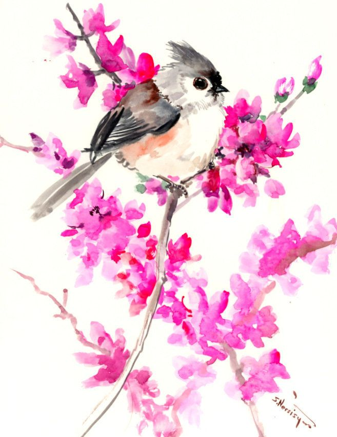 Birds And Flowers Titmouse And Cherry Blossom Original