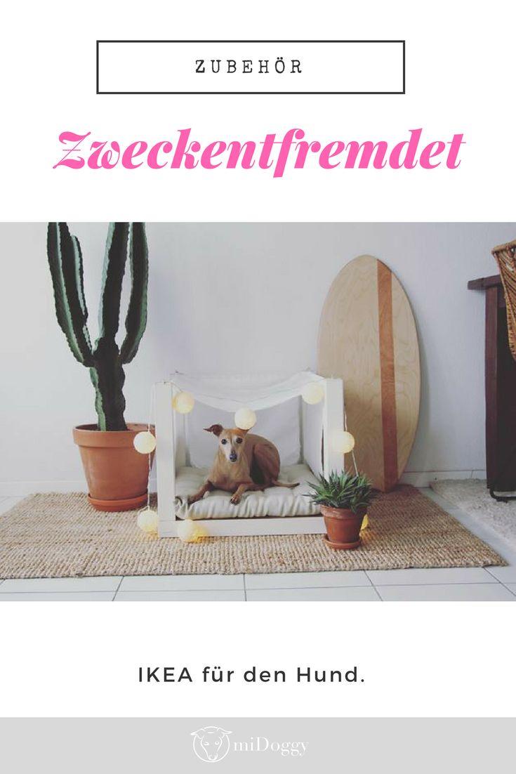 Dürfen Hunde Zu Ikea