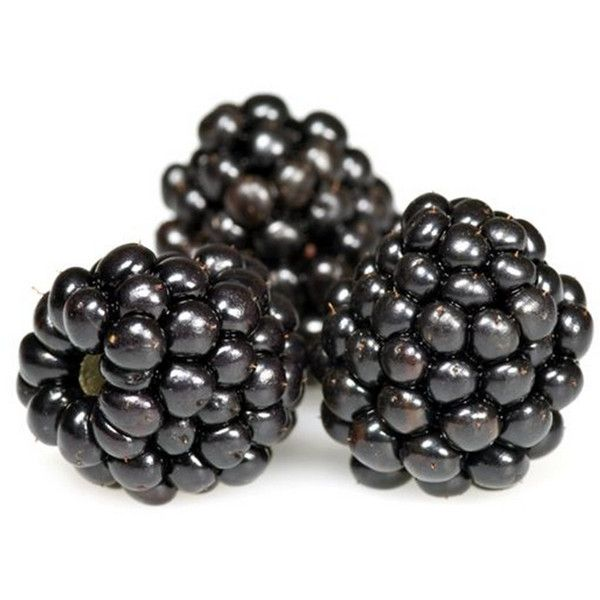 Blackberries — Buy Blackberries, Price , Photo Blackberries, from East... ❤ liked on Polyvore featuring food