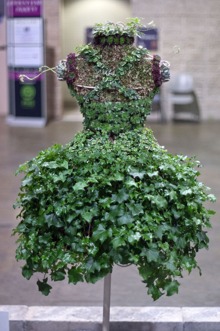 """This sundress with a bodice of succulents and a skirt of ivy (back view shown here) was entered in the """"plants grown on stuffed forms"""" competition class at the @PA Horticultural Society's 2013 Philadelphia Flower Show. Photo by Patrick Montero for Organic Gardening"""