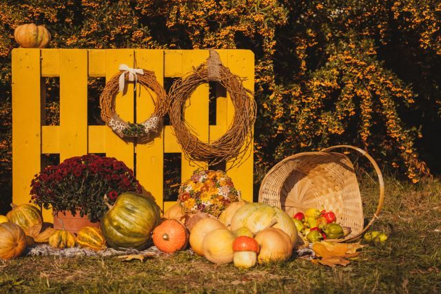 This would make a great picture background for a fall festival or a school autumn carnival. Even if you wanted to incorporate this cute scene into your own home landscape, you really can't go wrong with such great colors and setup. The golden fence and rustic wreaths only add to the charm of the scattered pumpkins and gourds on the grass below. Incorporating all kinds of fall-themed elements can't hurt when it comes to getting that feel across.