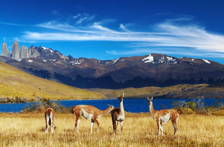 Torres del Paine, Patagonia, Chile - Global Geopolitics & Political ...