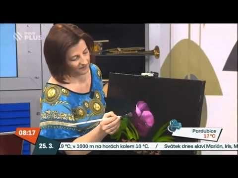 Snídaně s Novou - malování na mokré plátno - olejomalba II. - YouTube