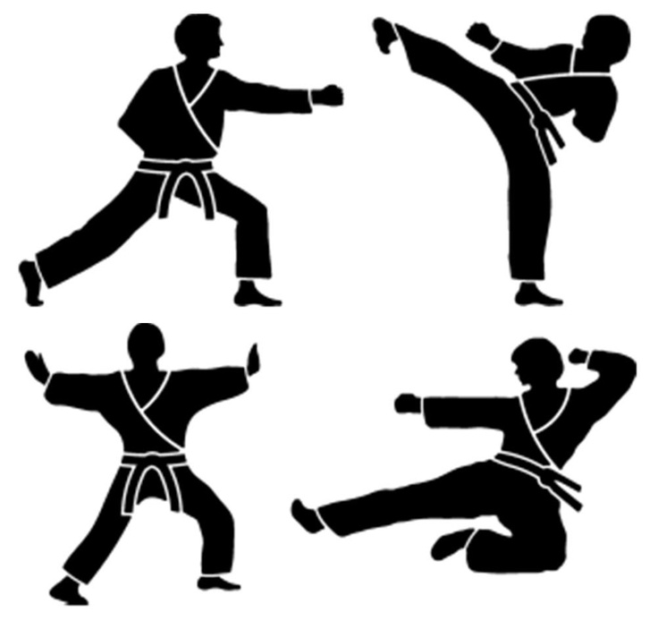 Martial Artist silhouette stencils perfect for painting a design around a Karate bedroom, Tae Kwon Do classroom, and much more!