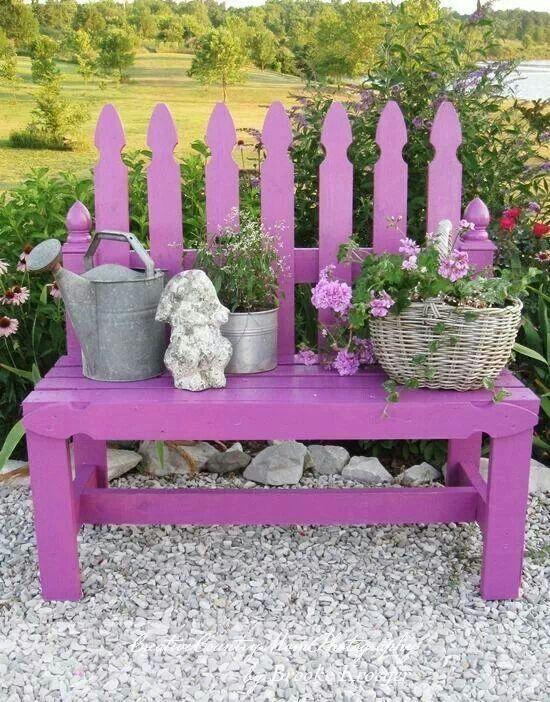 Splash of colour in the garden