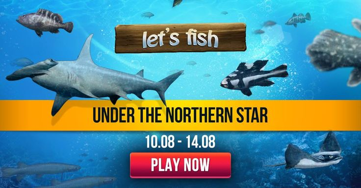 Under the Northern Star http://wp.me/p3xnRX-7d #letsfish