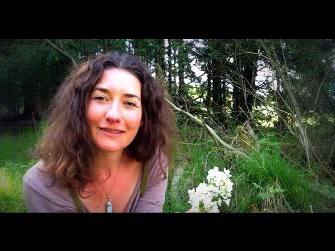 Jarní bylinky - Jedlé bylinky - Provoněný den - YouTube