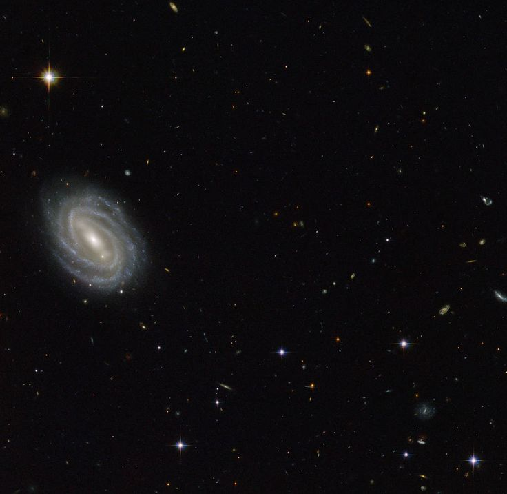 Sep. 5, 2014 Hubble Sees Spiral in Serpens. This new NASA/ESA Hubble Space Telescope image shows a beautiful spiral galaxy known as PGC 54493, located in the constellation of Serpens (The Serpent). This galaxy is part of a galaxy cluster that has been studied by astronomers exploring an intriguing phenomenon known as weak gravitational lensing. European Space Agency ESA/Hubble & NASA, Acknowledgement: Judy Schmidt