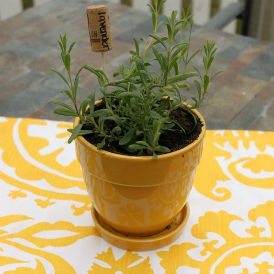 Easy Wine Cork Garden Markers @ Wait Til Your Father Gets Home; makes a great gift #garden #winecorks #herbs #planters