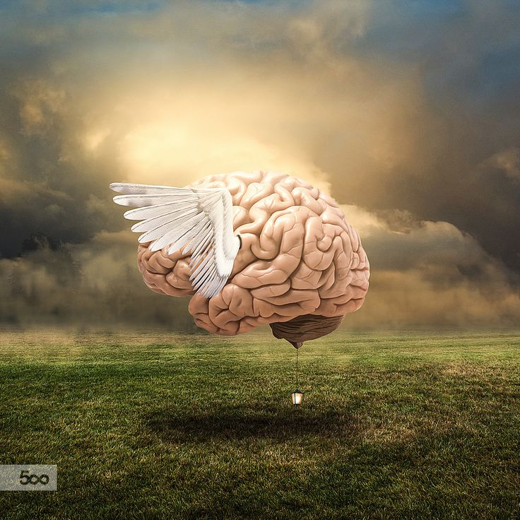 In My Brain by Lapanlima on 500px