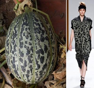 Melon De Luneville