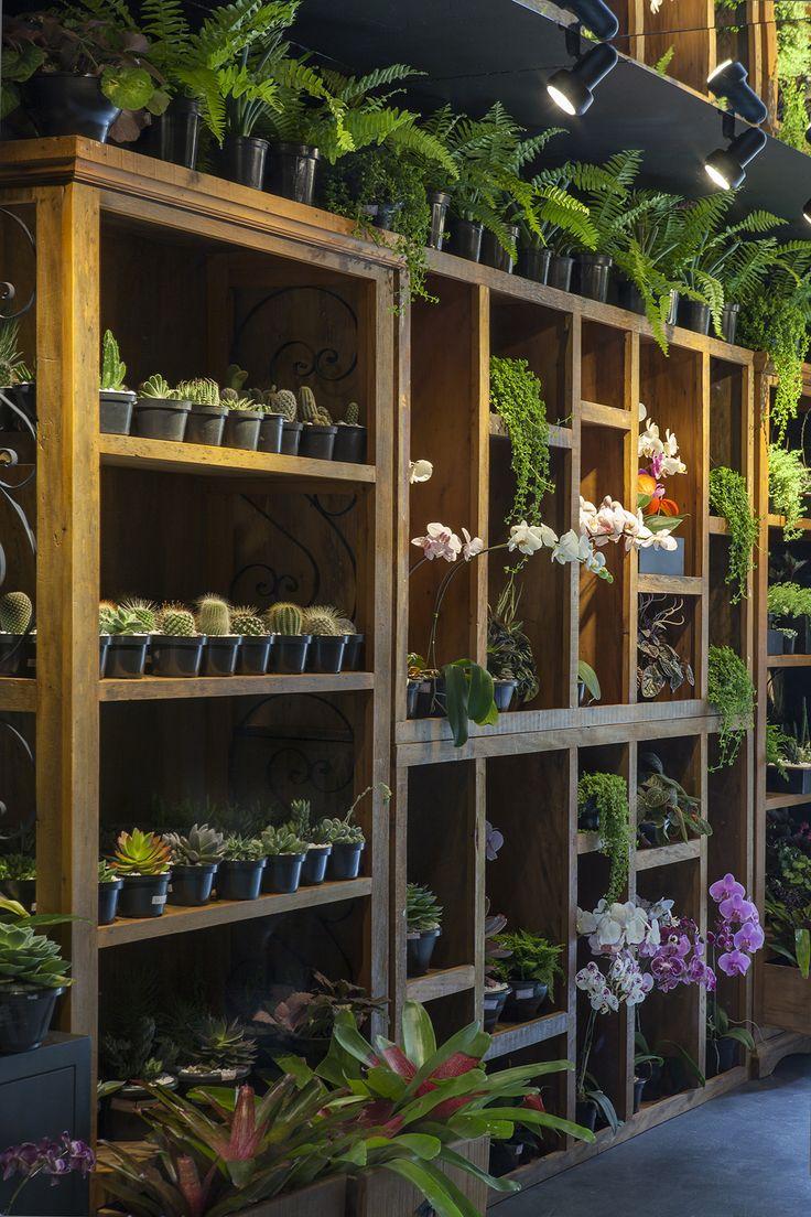Floricultura por Manoel Falcão em Casa Cor Espírito Santo 2015