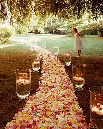 Love the hurricane lamps: Outdoor Wedding, Idea, Floating Candles, Paths, Wedding Aisle, Wedding Decor, Fall Wedding, Rose Petals, Flower