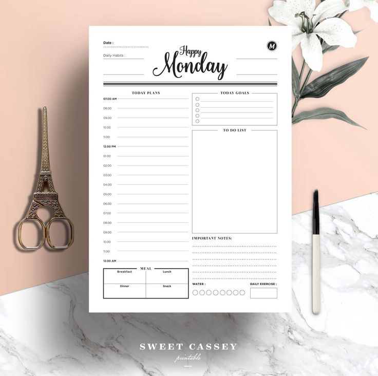 Daily Planner - Day Planner - Productivity Planner - Work Planner - A4 Planner,A5 Planner,US Letter Planner Size - Instant Download Planner by SweetCassey on Etsy