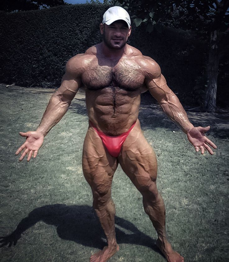 Bodybuilders Hairy 65