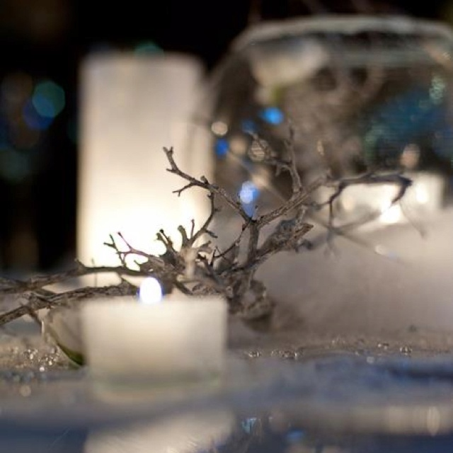 200 best wedding table decorations images on pinterest floral winter wedding table decoration junglespirit Image collections