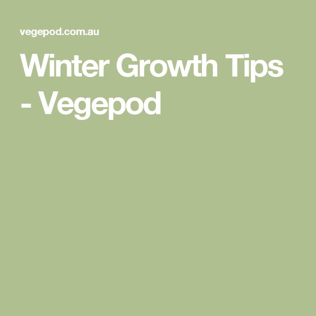 Winter Growth Tips - Vegepod