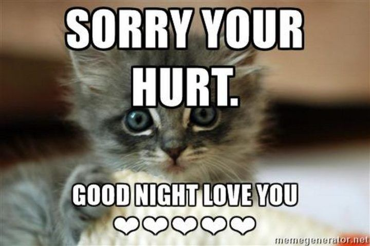 101 Good Night Memes For When You Want Funny Goodnight Wishes Good Night Funny Funny Good Night Quotes Good Night Friends