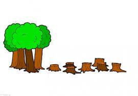 Resultado de imagen para actividades didacticas sobre la perdida de la biodiversidad