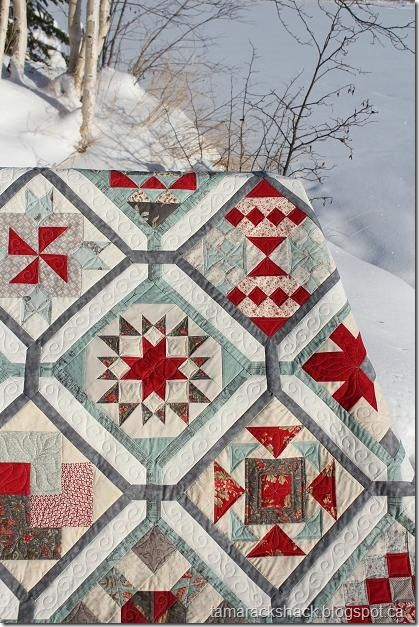 The colors are exquisite but then you look at the design and then you see the quilting. LOVE this quilt.