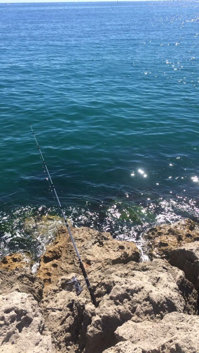 Nice little fishing trip