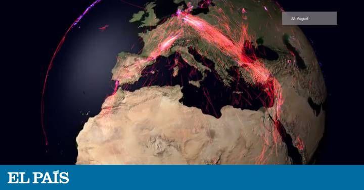 Un proyecto internacional registra los movimientos de centenares de especies por el mundo