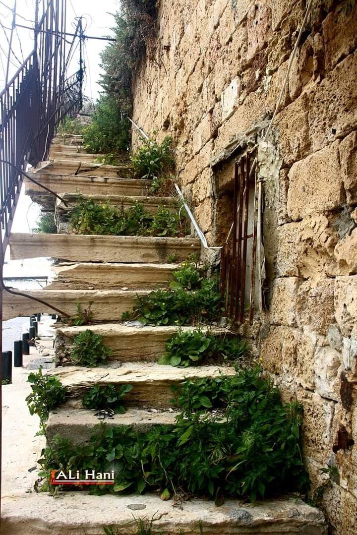 درج قديم من مدينة صور داخل السوق Old Houses Photo South Lebanon