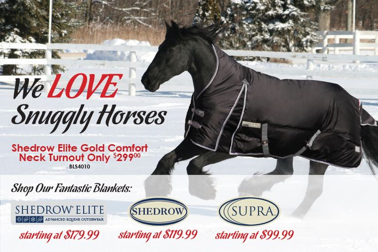 Greenhawk Harness & Equestrian - Shop Winter Blankets