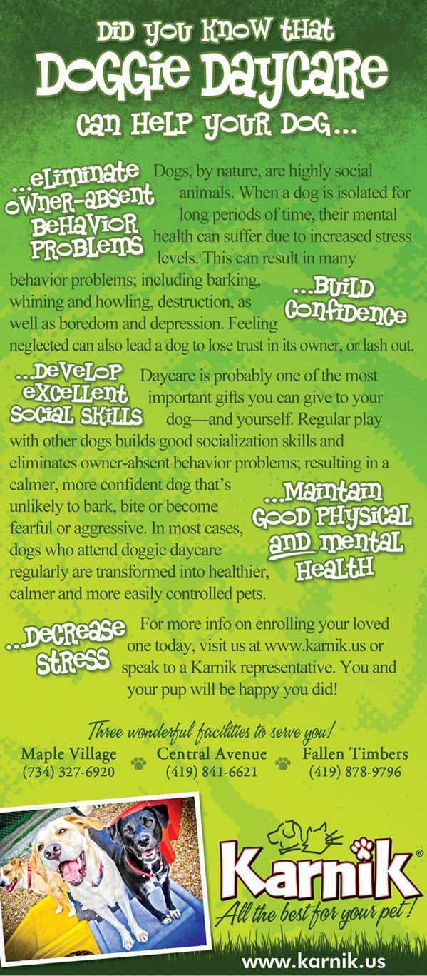 Karnik - Doggie Daycare Rack Card on Behance
