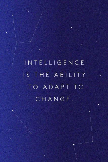 Intelligence...