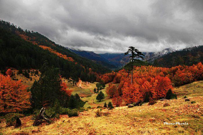 Ορεινή Φωκίδα-Φθιώτιδα