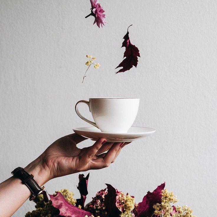Czy ktos tu ma ochote na filizanke jesiennej kawy? . . . . . . . #darlingmoment #beautyinsimplicity #aquietstyle #embracingtheseasons #underthefloralspell #myeverydaymagic #searchwandercollect #botanicalpickmeup #thehappynow #momentsofmine #danielwellington #kinfolklife #inspiremyinstagram #theartofslowliving #pursuepretty #botanicaldreamers #flowerstagram #aflowerenthusiast #dsfloral #vscoflowers #flashesofdelight #thatsdarling #byarrangement #astilllifestyle #tv_stilllife #curated_nature…