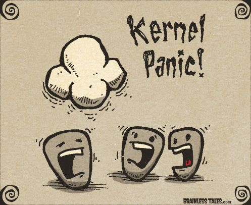 Kernel Panic!